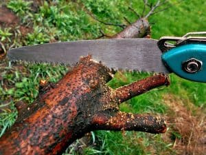 Best Backpacking Saw